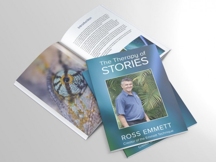 The Therapy of Stories by Ross Emmett
